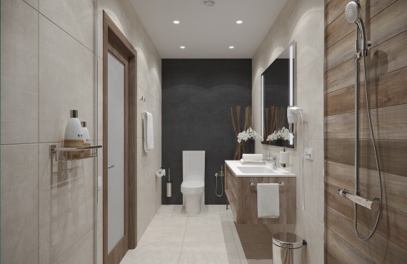 Delux bathroom